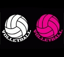 Volleyball w/ Word Window Decal - in 2 Colors