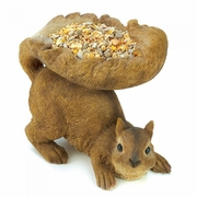 Birdfeeder Woodland Squirrel