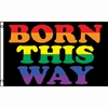 Born This Way Rainbow Flag  3' x 5'