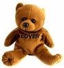 Embroidered  Lover  Plush Bear