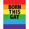 "Gay Pride Blanket  Born This Gay  79"" x 91"""