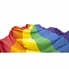 Gay Pride Rainbow Street Flag  20 Ft. x 33 Ft.