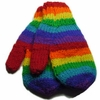 Gay Pride Wool Mittens