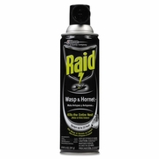 Raid® Wasp & Hornet Spray