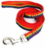 "Rainbow Leash Nylon 1/2"" wide x 6ft"