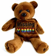 Rainbow  Plush Bear  Missing You