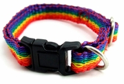 "Rainbow Nylon  Pet Collar Small   8""-14"""