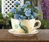 Teacup Planter  Peacock Design