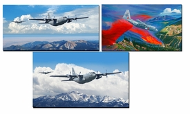 302nd 731st AW Official C-130 Paintings