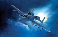 "A-10 Thunderbolt ""Cosmo"" 20x28 Canvas"