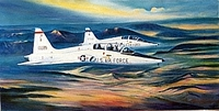 "T-38 ""Two Ship"" 16x24"