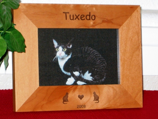 Cat Picture Frame - Personalized Frame - Laser Engraved Cats & Heart