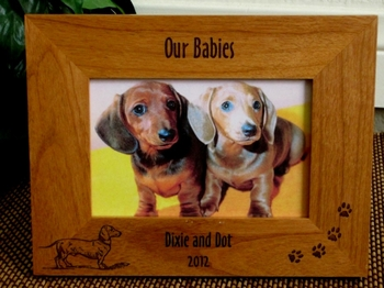 Dachshund Picture Frame - Personalized Frame - Laser Engraved Dachshund & Pawprints