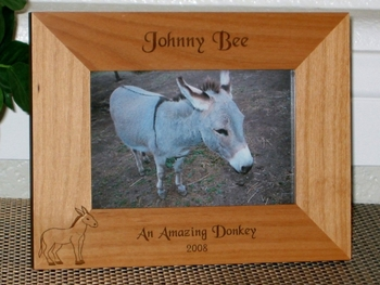 Donkey Picture Frame - Personalized Frame - Laser Engraved Donkey