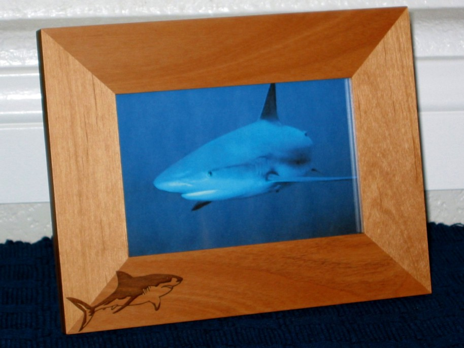 Great White Shark Picture Frame - Personalized Frame - Laser ...