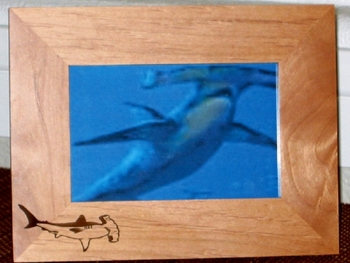 Hammerhead Picture Frame - Personalized Frame - Laser Engraved Hammerhead Shark