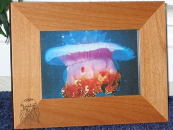 Jellyfish Picture Frame - Personalized Frame - Laser Engraved Jellyfish