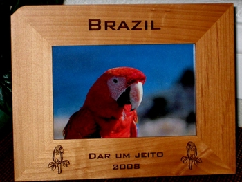 Macaw Picture Frame - Personalized Frame - Laser Engraved Macaws