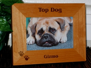 Pet Picture Frame - Personalized Frame - Laser Engraved Pawprints