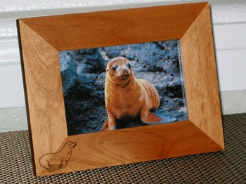Sea Lion Picture Frame - Personalized Frame - Laser Engraved Sea Lion