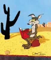 Acme Catalogue Wile E Coyote - Wile E. Coyote & Road Runner