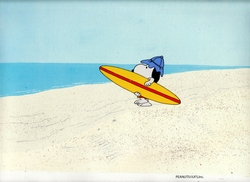 Surfs Up? OPC