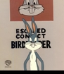 LOONEY TUNES <BR>           SHOW ART