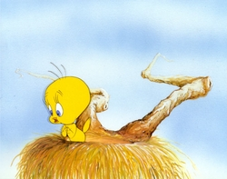 Tweety Bird Framed Lithograph