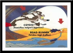 Wile Coyote & Road Runner - Famishius Ingeniusi