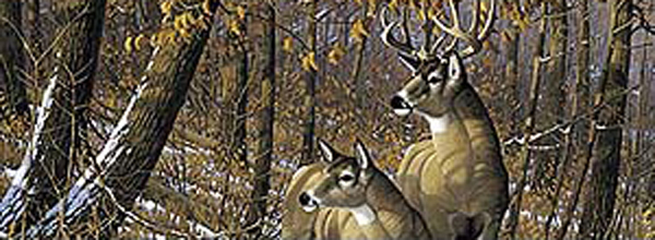 Graphics For Whitetail Deer Rear Window Graphics Www - Rear window hunting decals for trucksgeese scenery sticker for rear window hunting decals for trucks