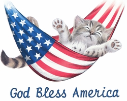 SOLD OUT! American Kitty!! Cat in Hammock! God Bless America Plus Size & Supersize T-Shirts S M L XL 2x 3x 4x 5x 6x 7x 8x (Lights Only)