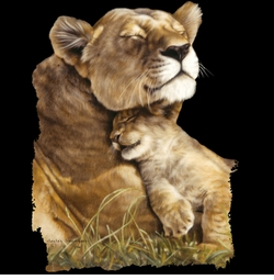 SALE! Beautiful Contentment Lion Lioness Cub Plus Size & Supersize T-Shirts S M L XL 2x 3x 4x 5x 6x 7x 8x (All Colors)