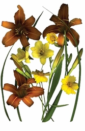 SOLD OUT! Brown Lilies & Coreopsis Plus Size T-Shirt 4xl 5xl