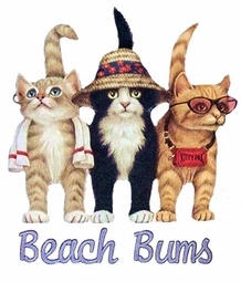 SALE! Hot! Plus Size & Supersize Beach Kitty's T-Shirts S M L XL 2x 3x 4x 5x 6x 7x 8x