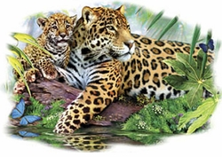 SALE! Leopard Mom and Cub Plus Size & Supersize T-Shirts S M L XL 2xl 3xl 4x 5x 6x 7x 8x (Lights Only)