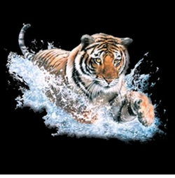 SALE! 3D Tiger Splash Plus Size & Supersize T-Shirts S M L XL 2x 3x 4x 5x 6x 7x 8x (All Colors)
