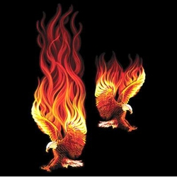SALE! Fire Eagle Plus Size & Supersize T-Shirts S M L XL 2x 3x 4x 5x 6x 7x 8x (Dark Colors Only)