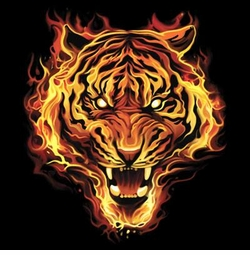 SALE! Flaming Tiger Plus Size & Supersize T-Shirts S M L XL 2x 3x 4x 5x 6x 7x 8x (Darks Only)