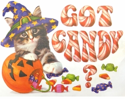 SALE! Got Candy Halloween Kitty Plus Size & Supersize T-Shirts S M L XL 2x 3x 4x 5x 6x 7x 8x (Lights Only)
