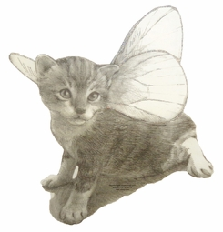 SALE! Kitten Fairy Wings Illustrative Plus Size & Supersize T-Shirts S M L XL 2x 3x 4x 5x 6x 7x 8x (Lights Only)