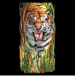 SALE! Prowling Tiger in Grass Plus Size & Supersize T-Shirts S M L XL 2x 3x 4x 5x 6x 7x 8x (All Colors)
