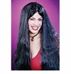 "SALE!  25"" Black Witch Wig Halloween Costume Accessory Black Wig"