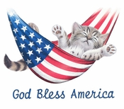 SALE! American Kitty!! Cat in Hammock! God Bless America Plus Size & Supersize T-Shirts 3xl 5xl