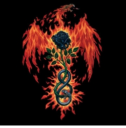 SALE! Fire of Sages Plus Size & Supersize T-Shirts S M L XL 2xl 3xl 4x 5x 6x 7x 8x (Darks Only)