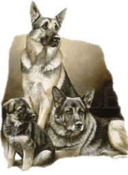 SOLD OUT! German Shepard Family  Plus Size & Supersize Dog T-Shirts S M L XL 2xl 3xl 4x 5x 6x 7x 8x (Lights Only)