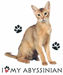 SOLD OUT! I Love My Abyssinian Cat Plus Size & Supersize T-Shirts S M L XL 2xl 3xl 4x 5x 6x 7x 8x (Lights Only)