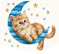 SOLD OUT! SALE!! Kitty Moon and Stars Plus Size Supersize T-Shirt - 4X Supersize