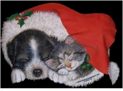 SOLD OUT!!! Kitty & Puppy Under Santa's Hat! Plus Size & Supersize Dog T-Shirts S M L XL 2x 3x 4x 5x 6x 7x 8x Many Colors!  (Lights Only)