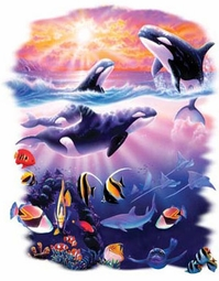 SOLD OUT!!!!!!!!!!!!!!!Orca Whales Plus Size & Supersize T-Shirts S M L XL 2xl 3xl 4x 5x 6x 7x 8x (Lights Only)