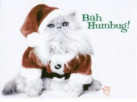SOLD OUT!!!SALE! Bah Humbug Kitty! Plus Size & Supersize T-Shirts S M L XL 2xl 3xl 4x 5x 6x 7x 8x (Lights Only)